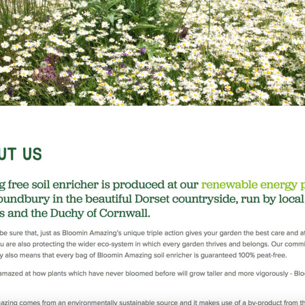 Bloomin Amazing Website